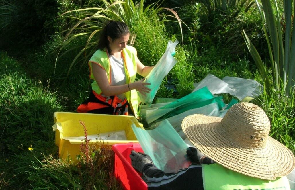 ניו זילנד – חווית שימור סביבתי ברחבי ניו זילנד