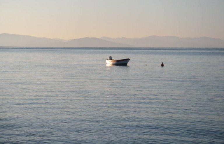 יוון צבי ים12