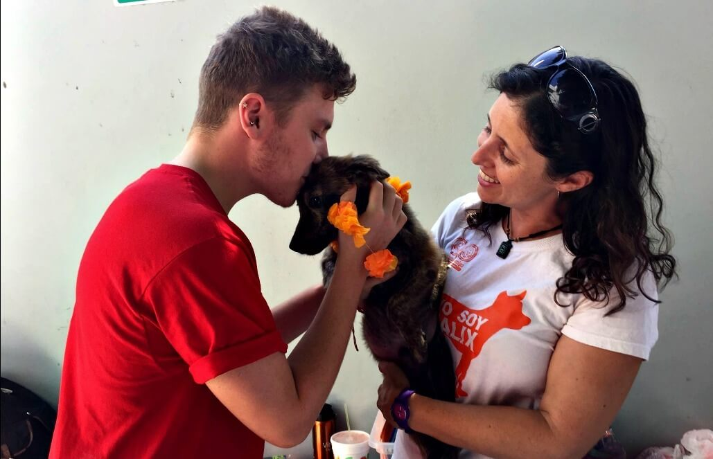 מקסיקו – טיפול בבעלי חיים וסיוע וטרינרי