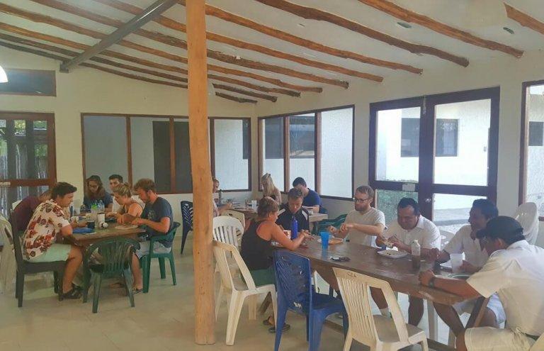 מקסיקו - טיפול בבעלי חיים וסיוע וטרינרי17
