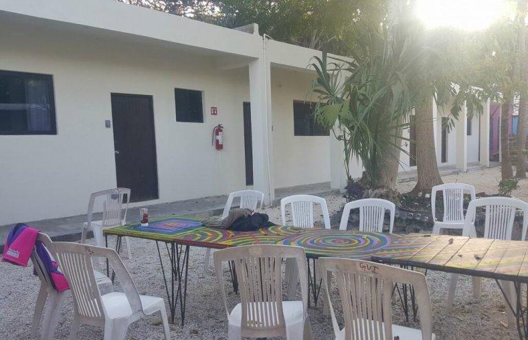 מקסיקו - טיפול בבעלי חיים וסיוע וטרינרי19