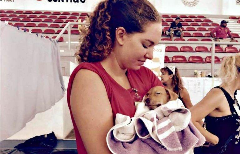 מקסיקו - טיפול בבעלי חיים וסיוע וטרינרי7