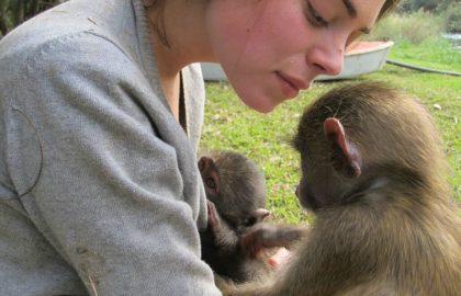דרום אפריקה – מרכז שיקום לקופים וחיות בר
