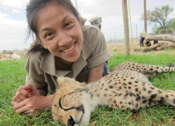 דרום אפריקה – בית מחסה לחיות בר ממשפחת החתוליים