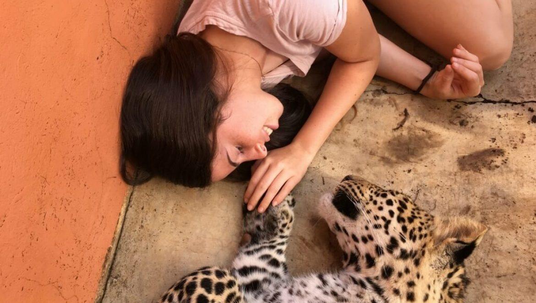דרום אפריקה – מקלט לחיות בר