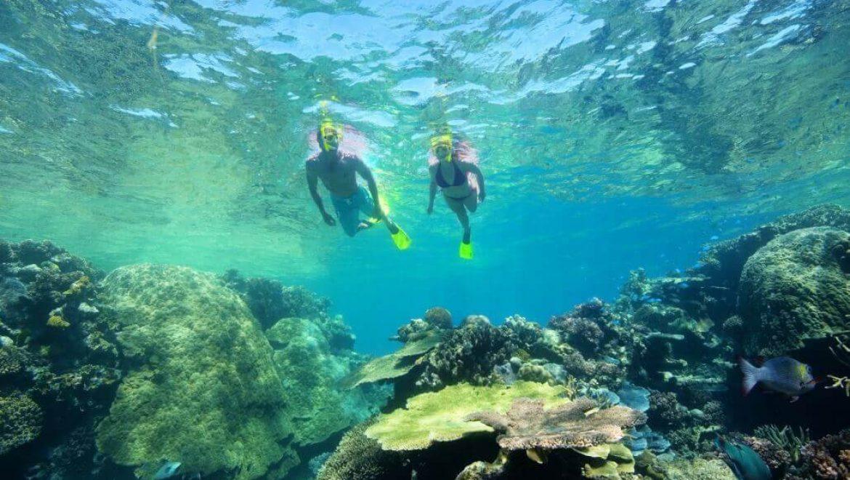 פיג'י – צלילה ושימור סביבה בפיג'י